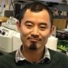 Postdoctoral Researcher